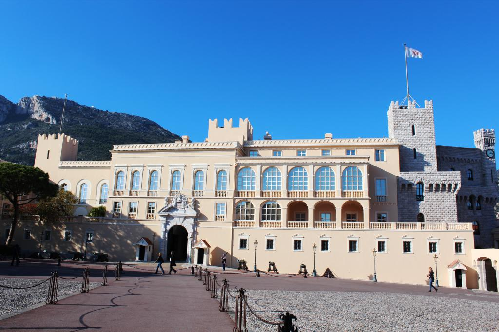 правозащитник, фото дворца в монако комплекс