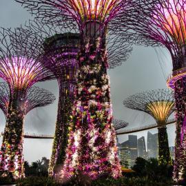 Сингапур: достопримечательности города-государства