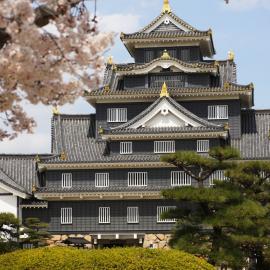 Токио (Япония): достопримечательности города